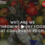Why are we Throwing Away Food that Could Feed People