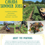 Canada Summer Jobs for Youth in Food Programs